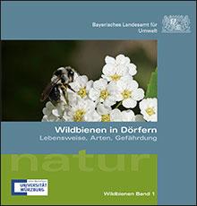 Titelbild zu: Wildbienen in Dörfern - Lebensweise, Arten, Gefährdung